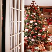 Weihnachtspaeckchen_am_Baum_haengen
