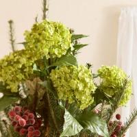 weihnachtsbaum-deko-christbaumspitze-hortensie-grn-frisch