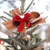 weihnachtsbaum-deko-christbaumspitze-im-freien-rustikal-rustikal-schleifen