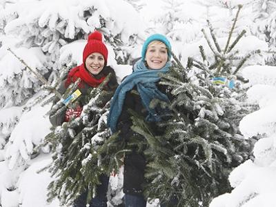 weihnachtsfeiern_NA_6041_noe_christbaum