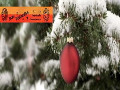 weihnachtsbaum_burgenland_bundesland