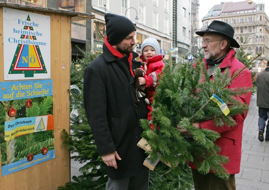 Wien Weihnachtsbaum Kaufen.Christäume Vom Bauern Mit Herkunftsgarantie Gibt S 160 Mal In Wien